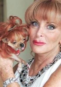 Miami Dog Inherits Millions